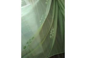 Зеленые круги на зеленом беркане
