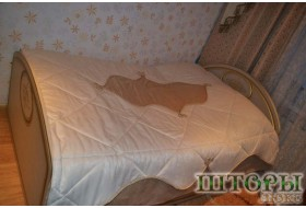 Покрывала и подушки 19